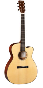 Woody's signature Martin guitar